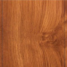 Hampton Bay Alexander Oak Laminate Flooring- 5 in. x 7 in. Take Home Sample