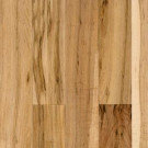 Bruce Abbington Country Natural Maple Solid Hardwood Flooring - 5 in. x 7 in. Take Home Sample